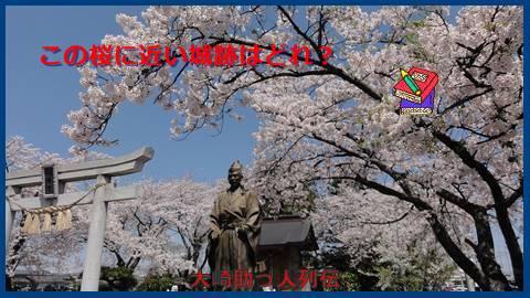 大崎検定問256(中級編)この桜に近い城跡はどれ?